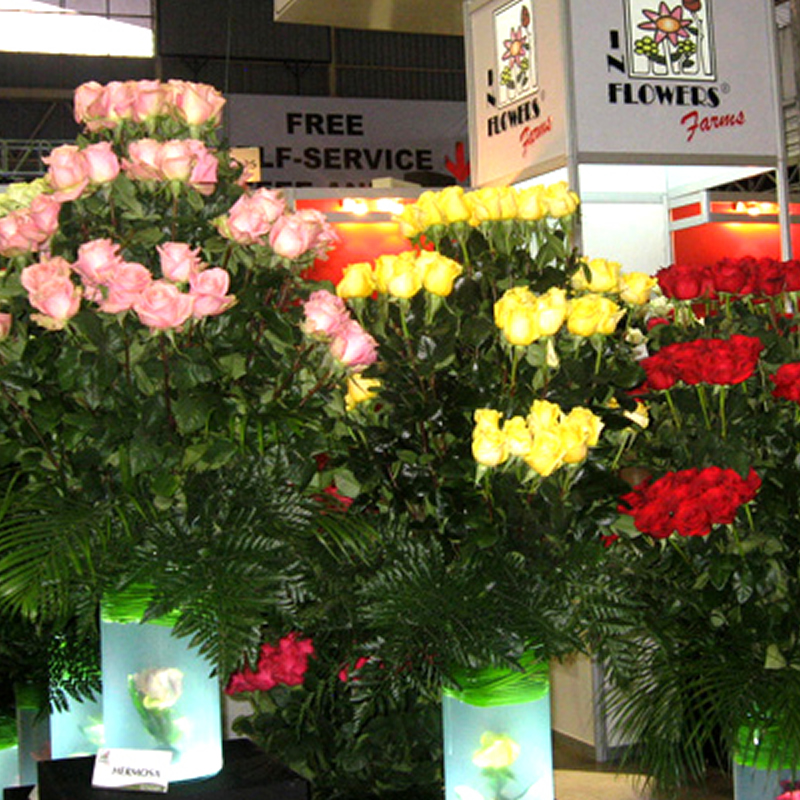 Expo Agriflor 2014